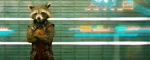 rocket-raccoon_opt
